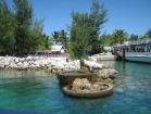 bahamas019_m