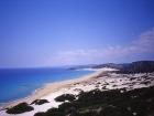 cipro011_m